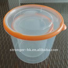 transparent picnic food lunch box