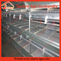 Hot new products for 2016 Automatic egg collection system layer bird cage for poultry farming equipment