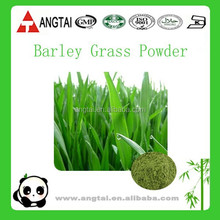 100% Natural Source Green Barley Grass Powder/Slimming Powder