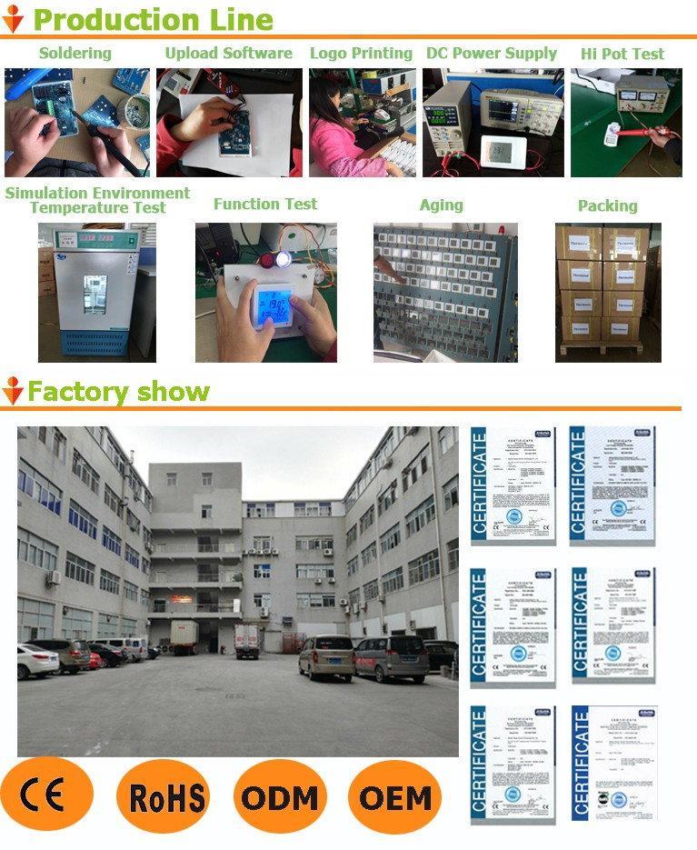 Production Line and factory show
