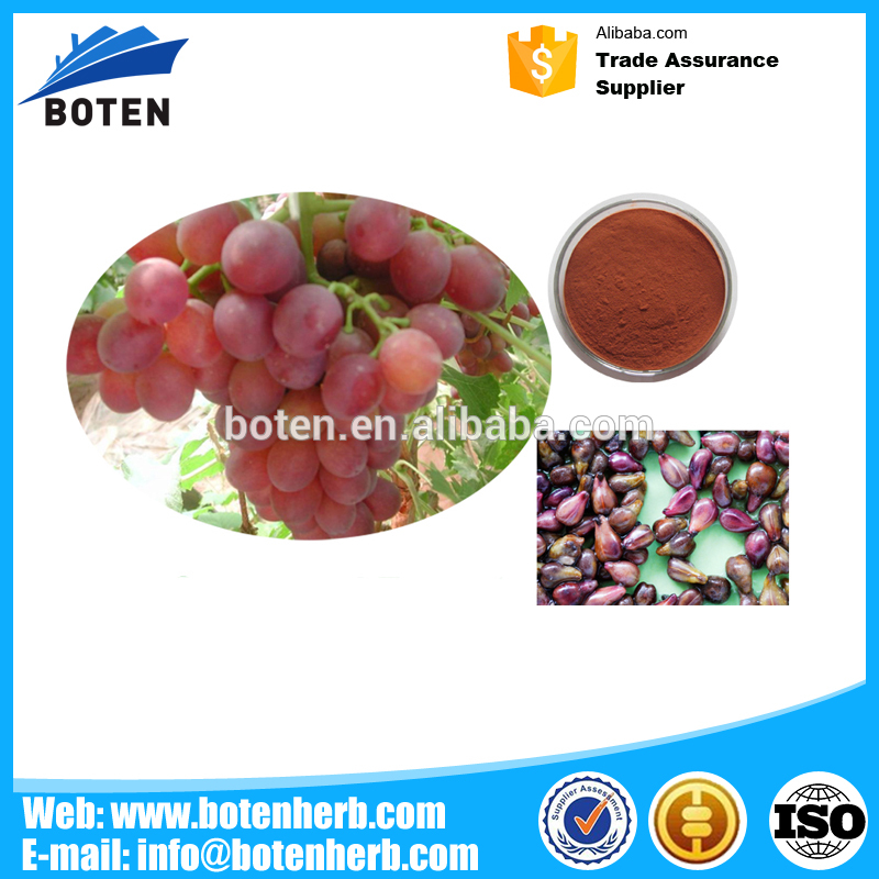 Low Price Grape seed extract OPC 95% Polyphenol 80% with certificate