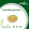 Direct manufactory natural luteolin 98% supplement