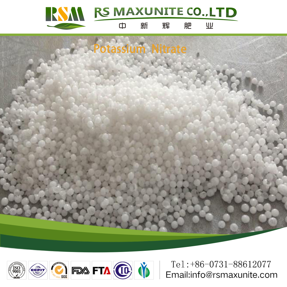 Chemical name KNO3 fertilizer price hot sale for chemistry potassium nitrate
