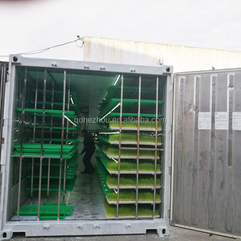 1000KG per day automatic animal fodder sprout container/hydroponic barley growing system with green trays
