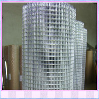stainless steel welded wire mesh / china factory stainless steel welded wire mesh