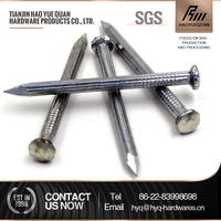 #60 high quality galvanized concrete steel nail 1 inch and 2 inches for sale