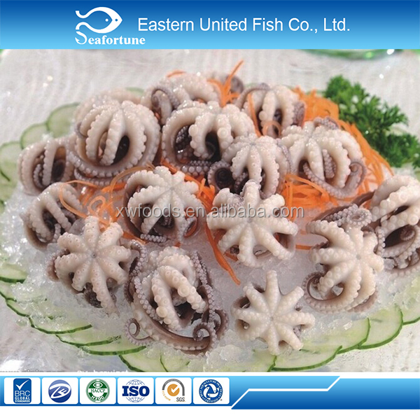 seafood export wholesale health price baby octopus