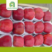 Chinese fruit Huaniu apple buyer