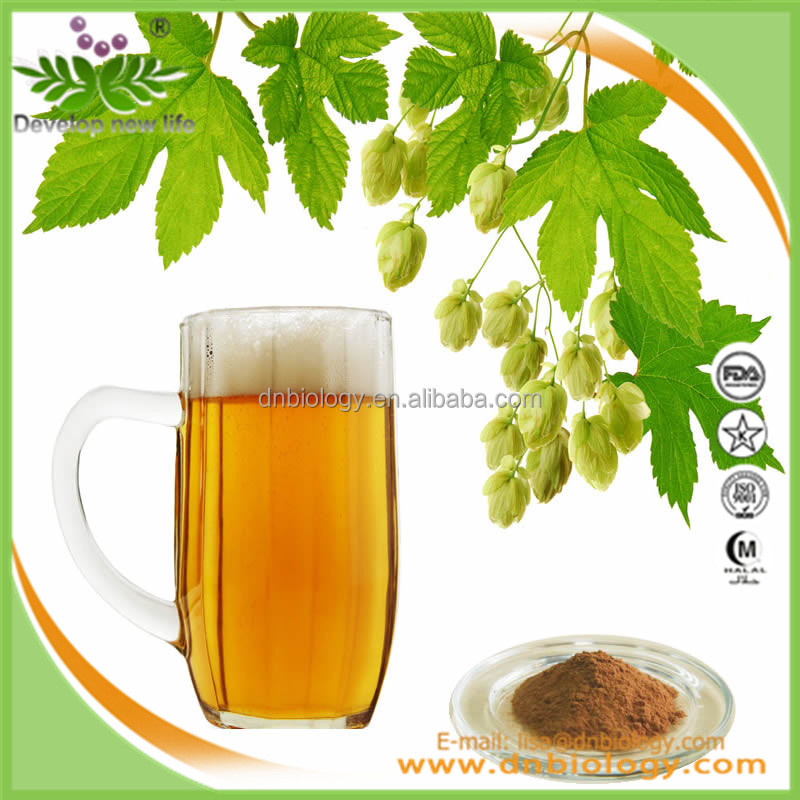Health Food Top quality plant extract Hops Flower Extract,Humulus lupulus extract CAS NO.: 6754-58-1 KOSHER & Halal