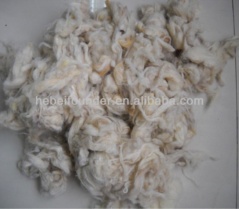 Carpet Grade Scoured Clipped Wool,White color