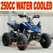 24HP 4 Valve 250cc Sports ATV