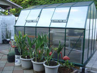 Grow 'N Up Hobby Greenhouse 6' W x 6' L
