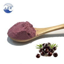 Health product food best selling Acai Berry Powder (Freeze Dried) from Brazil