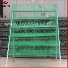Wholesale Indoor Galvanized Quail Putting Cage For Sale(H & A type,wholesale,good quality,Made in China)