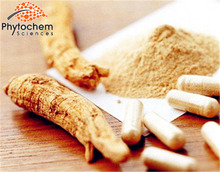 Chinese supplier angelica extract with 1% Ligustilide