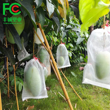 HDPE date palm mango cover bags/mango anti insect net bag for fruit from china
