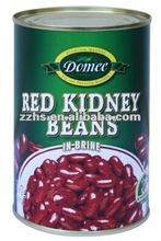 Kidney Beans Red Kidney Beans Brine Preservation Process and 24 months shelf life