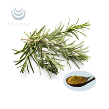 Rosemary Leaf Extract powder/liquid 15% Carnosic Acid for beef/meat product antioxidant