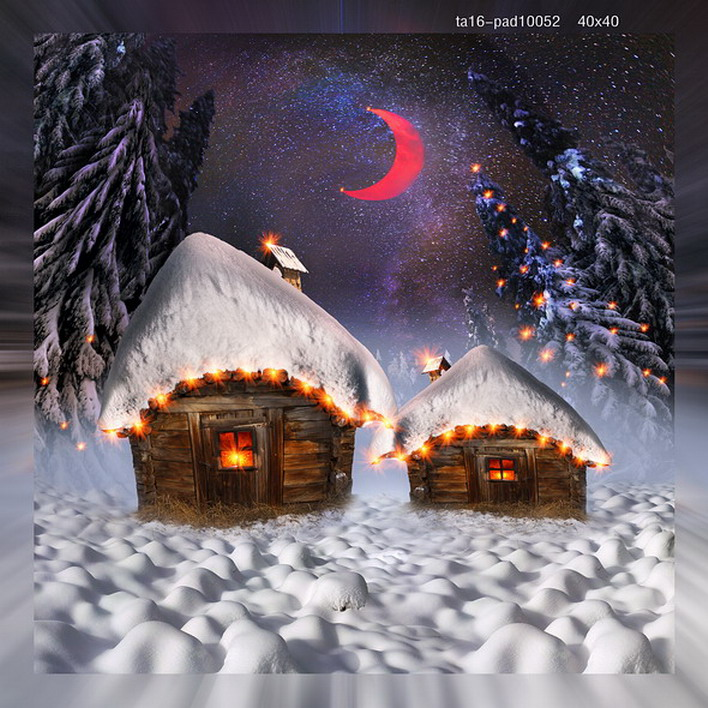 Fiber Optic Winter Wonderland Canvas Wall Art Lighted Painting Holiday Decor