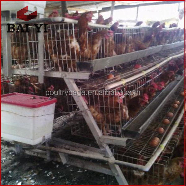 Chickenn Layer Cage Price, Chicken Egg Layer Cages, Layer Chicken Battery Cage For Poultry Farm