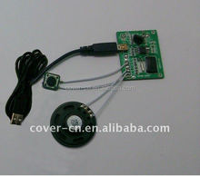 Electronic Components MP3 Sound Module with USB Port for gifts