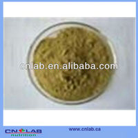 China Plant With HACCP ,BRC Certificates Natural Valerian Root P.E.