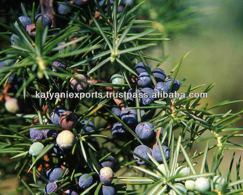 100% NATURAL JUNIPER BERRY OIL