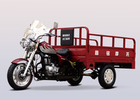 China 3 wheel cargo motorcycle tricycle with cargo for sale