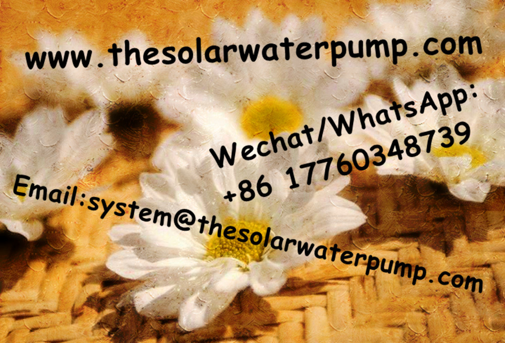 Competitive price submersible deep well water pump  inverter for solar water pump system  high quality