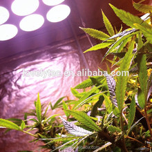 Plastic 45w led grow lighting for hydroponics store with great price