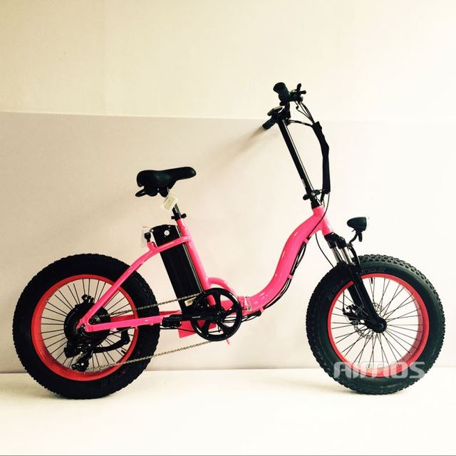 2016 BTN E-fat electric bike with BBS-02 motor