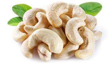 2016 cashew nuts price in China for hot sale