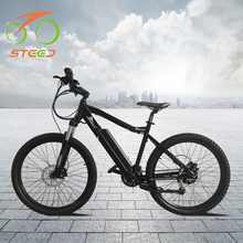 2018 new model 250w 36v hub motor cheap mountain cruiser electric bicycle