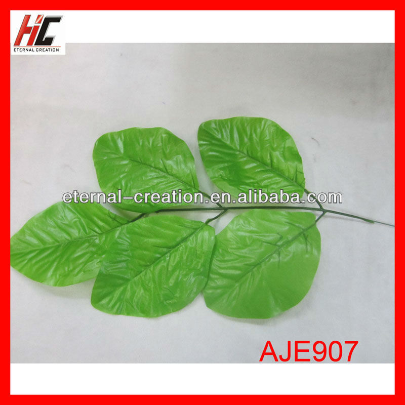 Leaves for flower arrangements loquat leaf extract company seeking agent