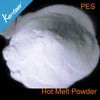 whose sales Copolyester Hot melt Adhesive powder