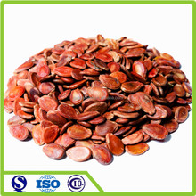 Red dried Chinese watermelon seeds