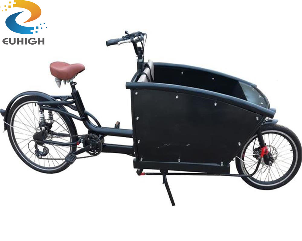 2 wheel electric bike/cargo tricycle for family or baby carring
