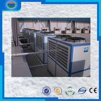 China manufacture special low cold room frozen croissant