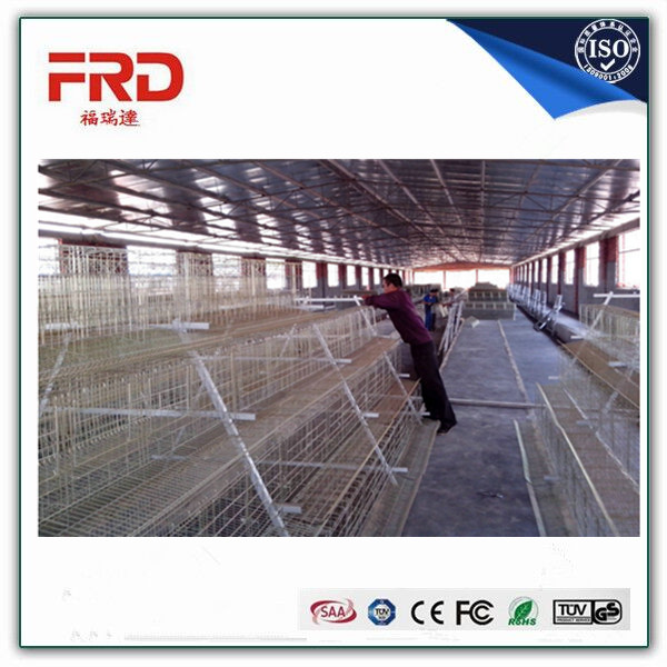 Trade assurance 100% payment guarantee factory supply wooden chicken layer cage with long working time
