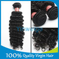 Yinweige hair product, malaysian curly hair weft,virgin unprocessed hair, hot selling