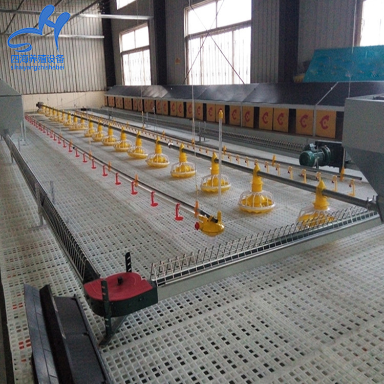 High Quality plastic flooring poultry chick