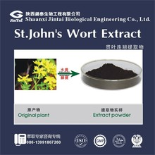 Factory supply extract powder Hypericins, Hyperforin St John's wort P.E.