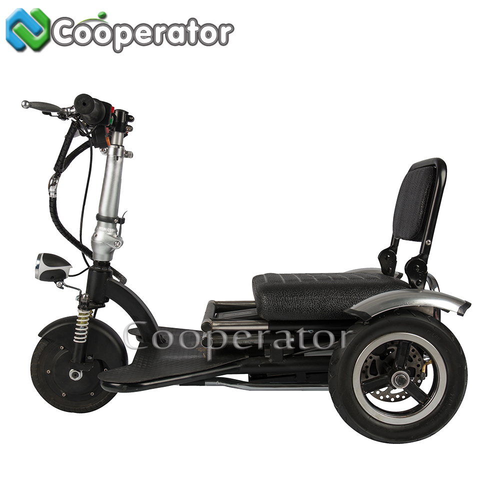 48V Battery Folding 3 Wheel Motorized Bike, Velo Electrique, Cargo Tricycle with Cabin