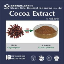 Pure extract type 10%,20% Theobromine Cocoa Extract powder