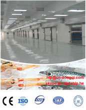 refrigerated cold storage rooms / frozen cold room
