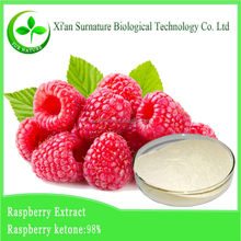 Supply fresh raspberry powder/raspberry seed extract 10:1