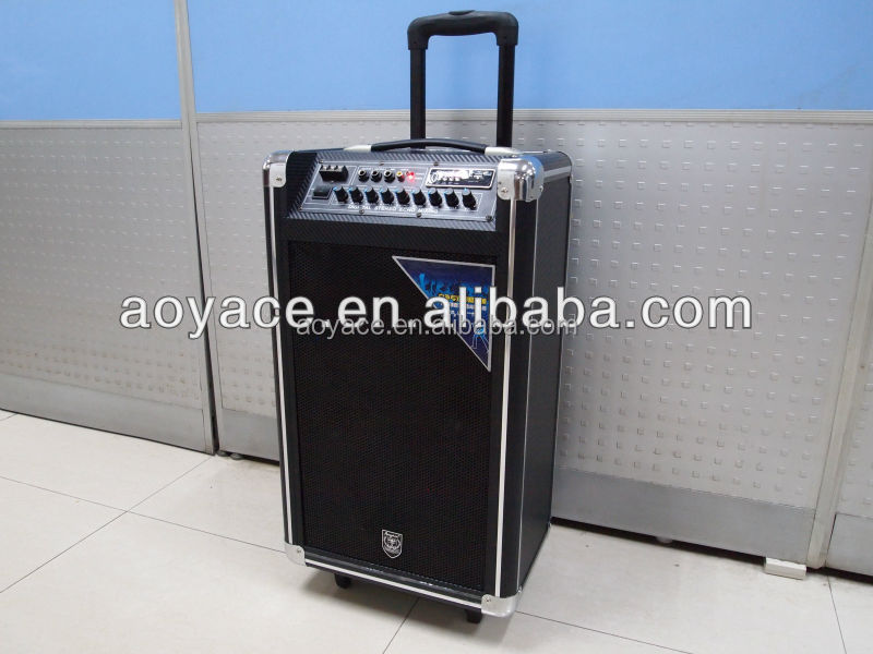 100W trolley portable speaker chargeable portable with usb,sd,wireless microphone