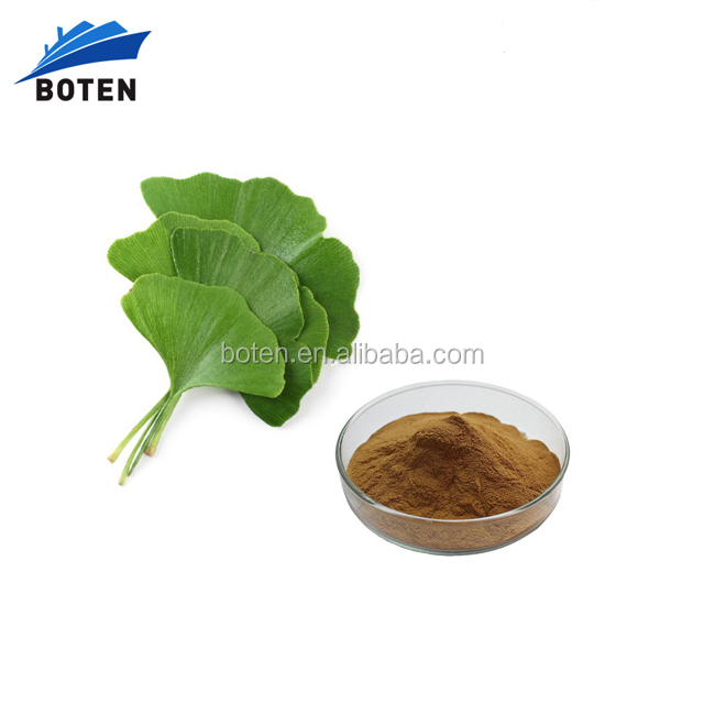 health care medicine ginkgo biloba leaves extract with flavones Terpenlactone