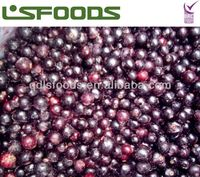 2014 frozen black currant hot sale from china