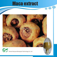 Maca Root Extract Instant Dynasty Maca Coffee